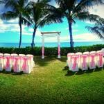 Ceremony Arch & Chiffon Canopy