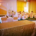 Overlays / Tablecloths